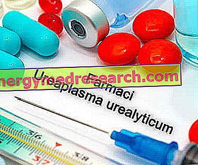 Zāles Ureaplasma infekciju ārstēšanai