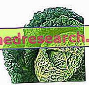 Coumadin: kost och näring