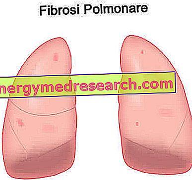 Medicamentos para el tratamiento de la fibrosis pulmonar.