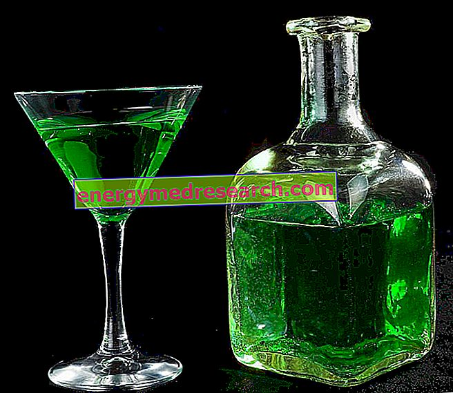 Absinthe Production