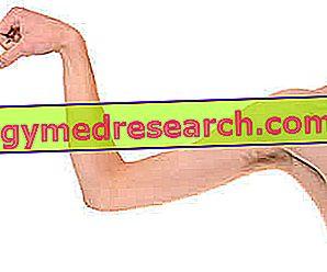 Pravna sredstva za mišični katabolizem