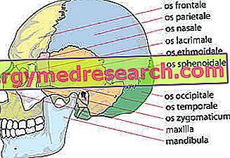 kaukolė su hipertenzija