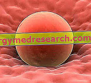 kur gydyti hipertenziją vitaminai ir mineralai gydant hipertenziją