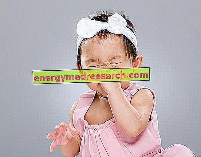 Orsaker till nysning
