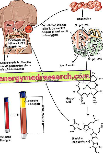 amlodipino vartojimas hipertenzijai gydyti
