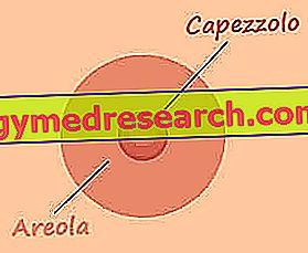 Θηλές - δομή, λειτουργίες και ασθένειες