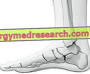 Relația bolilor articulațiilor și întregului corp, Meniu de navigare