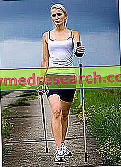"""""""Nordic Walking"""""""
