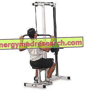 Fejl og rædsler i vægtrummet