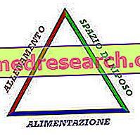 Piramit (Maksimum Sonuç) - Eğitim, Kurtarma, Beslenme