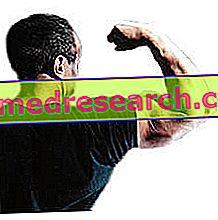 Treinamento moderno: métodos de treinamento