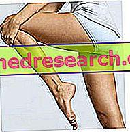 Pernas e nádegas: falsos mitos e erros no treino feminino