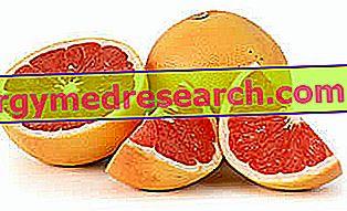 Grapefruit dan Obat-obatan - Interaksi obat