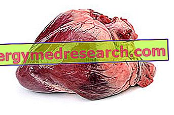 Hjerte av gris av R.Borgacci