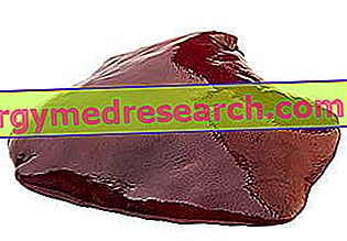 الكبد من بوفينو من R.Borgacci