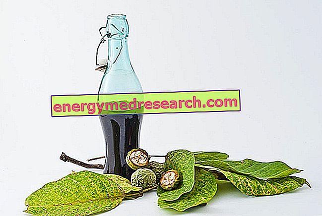 Tannines: antioxidanten of kankerverwekkende stoffen?