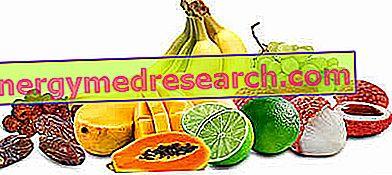 Augļi - Svaigi un žāvēti augļi - Uztura īpašības