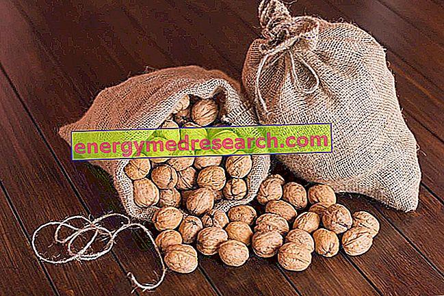 Nødder: Produktion og opbevaring