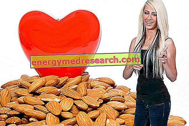 اللوز انخفاض الكوليسترول؟