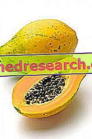 Fermentēta papaija