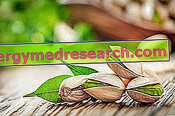 पिस्ता: पौष्टिक गुण, आहार में भूमिका और रसोई में R.Borgacci द्वारा उपयोग