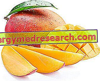 Mango (puuviljad): toitumisomadused, roll toitumises ja R.Borgacci söömine