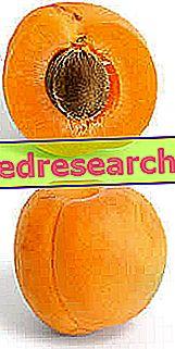 abrikosai