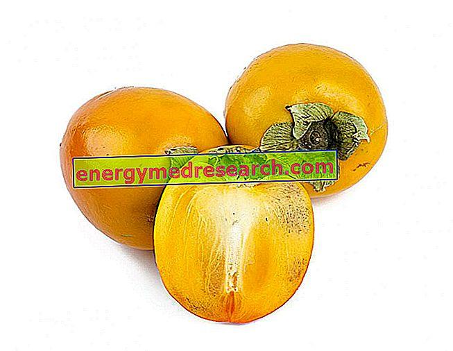 Persimmon i korthet, sammanfattad på persimmons egenskaper