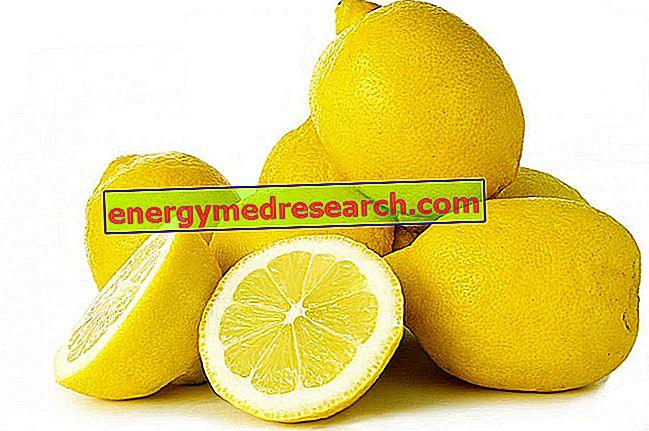 أصناف الليمون العالمية