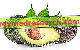 Avokado: Ernæringsmessige egenskaper, rolle i kosthold og hvordan å lage mat av R.Borgacci