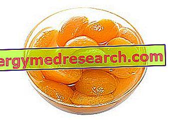Aprikoser i sirap av R.Borgacci