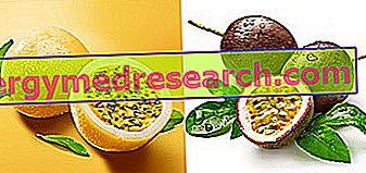 فاكهة العاطفة - ماراكوجا - Granadilla من R. Borgacci