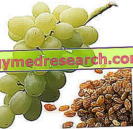 Sultana druer og rosiner