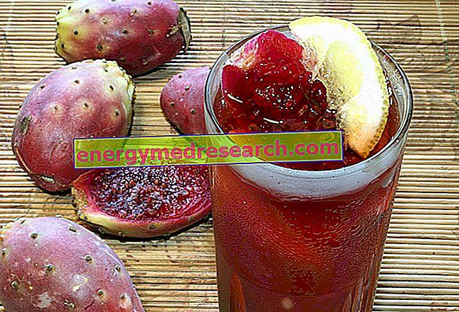 Prickly pirnid: fütokeemia ja populaarne meditsiin