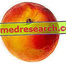 persikai