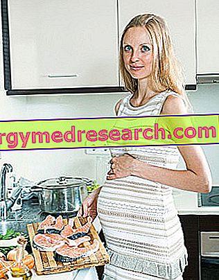 Сьомга по време на бременност