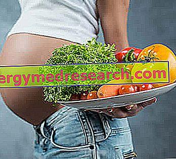 Holesterol v nosečnosti