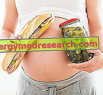 อาหารอันตรายในการตั้งครรภ์
