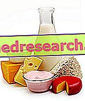 Млечни ферменти и пробиотици