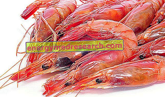 krevetės nuo hipertenzijos