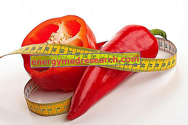 Ớt ớt để giảm cân và mô mỡ màu nâu
