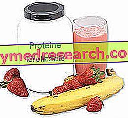 Hidrolizált fehérjék