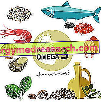 Omega Three w diecie