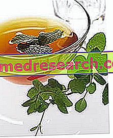 Κυτταρίτιδα: τσάι βοτάνων για κυτταρίτιδα