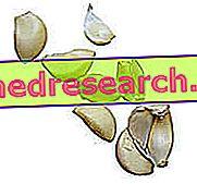 Papildinājumi, pārtika un ateroskleroze