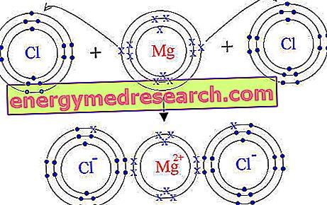 Magnesiumsalter - Hvilke å velge?