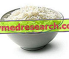 Białko Ryżowe
