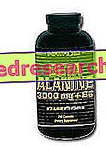 Béta alanin 3000 mg + B6 - NATROID