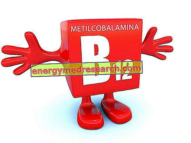 B12 sin suplementos de cianuro