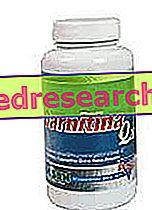 Karnitin Q10 - Gensan